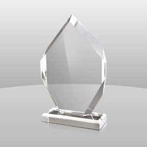 #acrylic trophy #trophy award #custom trophy